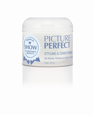 PICTURE PERFECT Styling +Conditioning Paste - Texture + Medium Hold ( 2 oz )