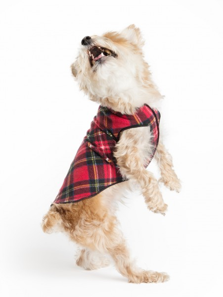 GoldPaw Stretch Fleece Pullover - Red Plaid